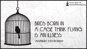 birds-born-in-a-cage-think-flying-is-an-illness